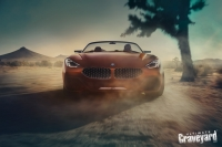 UltimateGraveyard: BMW Z4 Concept Car Front - Joshua Trees - Photo by Agnieszka Doroszewicz