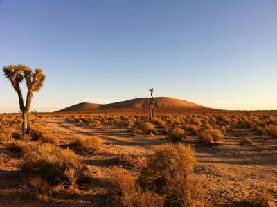 UltimateGraveyard Mojave Desert Filming & Photography Location - Joshua Trees & Sunset Mountain View